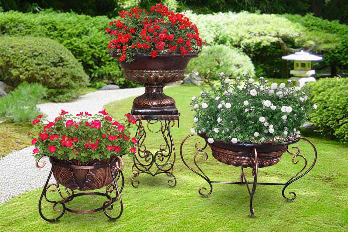 который цветы в уличных вазонах идеи фото предосторожности