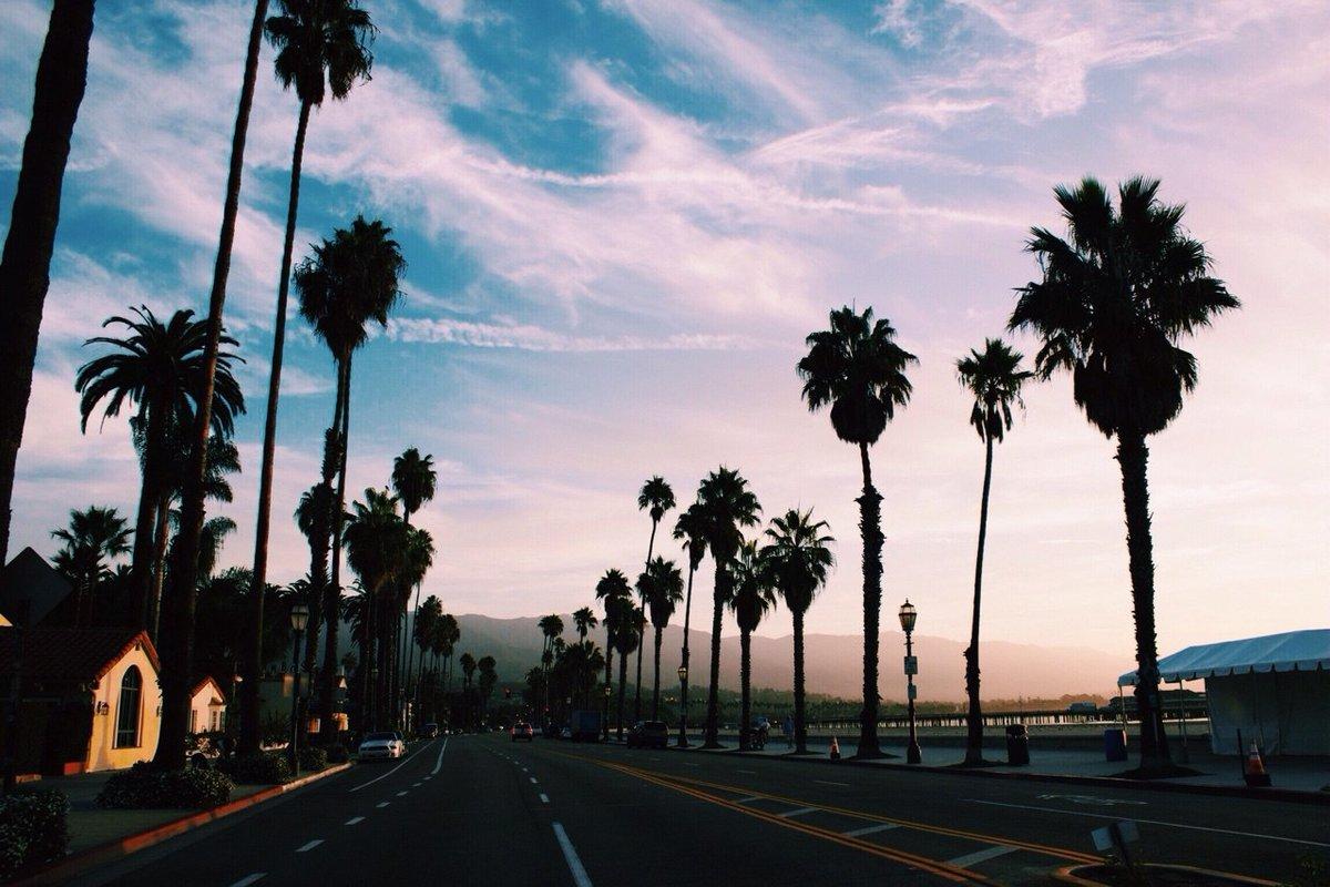 картинки с пальмами и городом