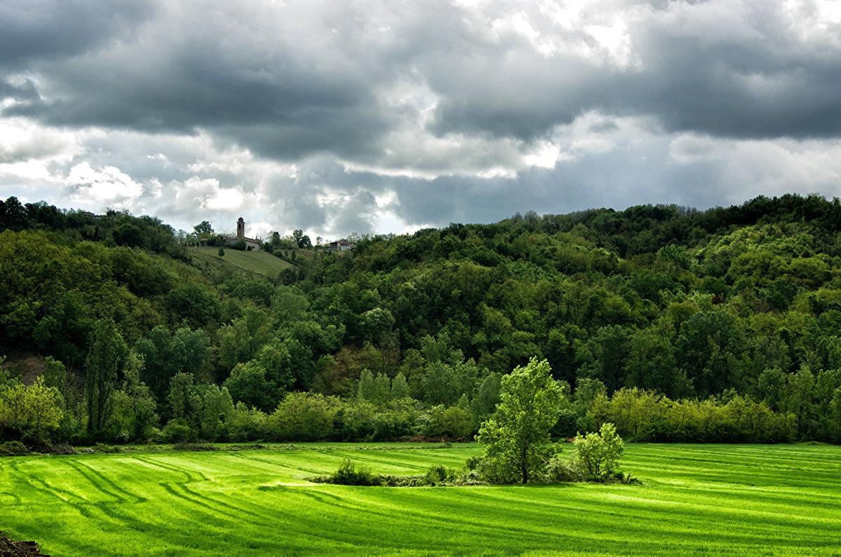 Итальянские леса