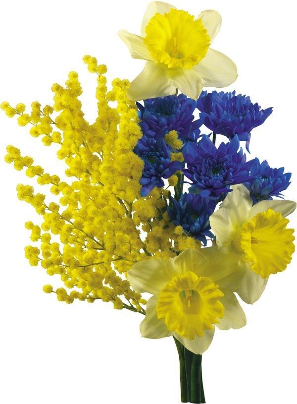 Праздничные цветы на 8 марта желтая ветка, тюльпановое