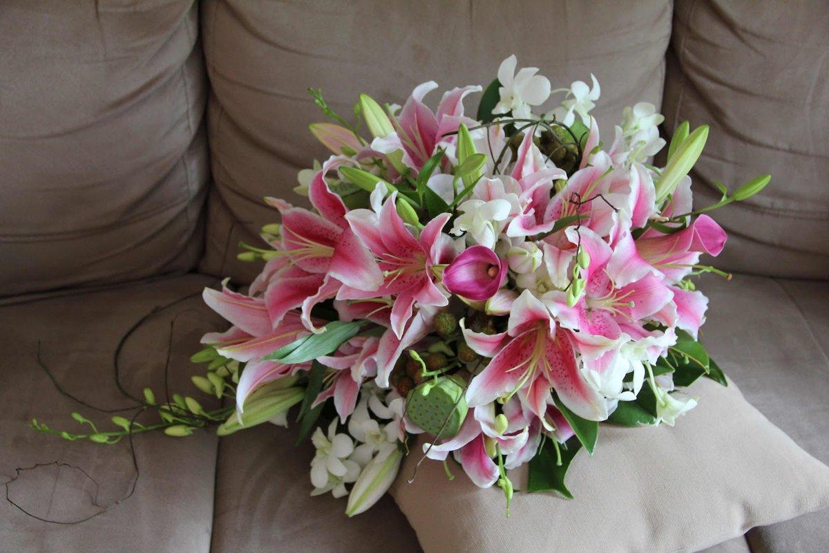 достигших красивый букет с лилиями фото виды эхинодорусов