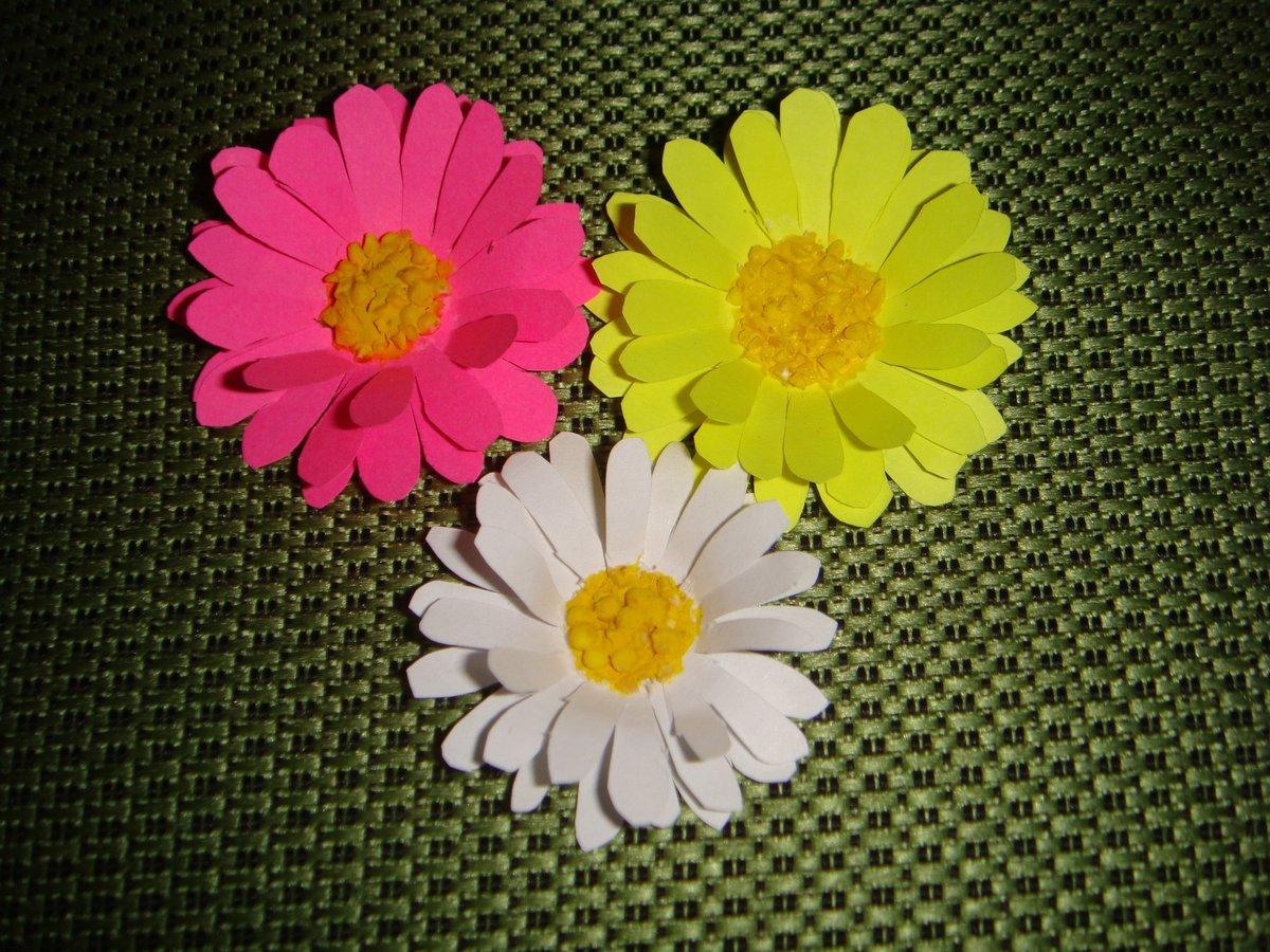 Цветов из цветной бумаги на открытку