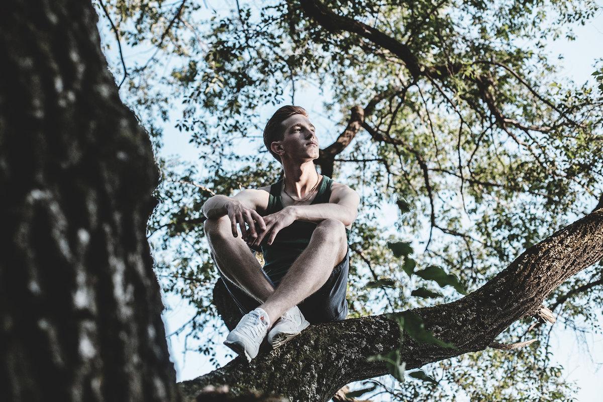 Смешная картинка мужик на дереве, огромным букетом ромашек