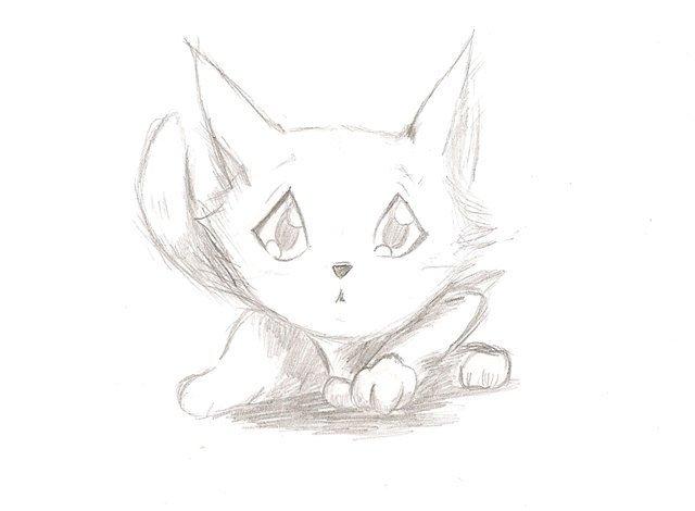 Картинки карандашом коты аниме