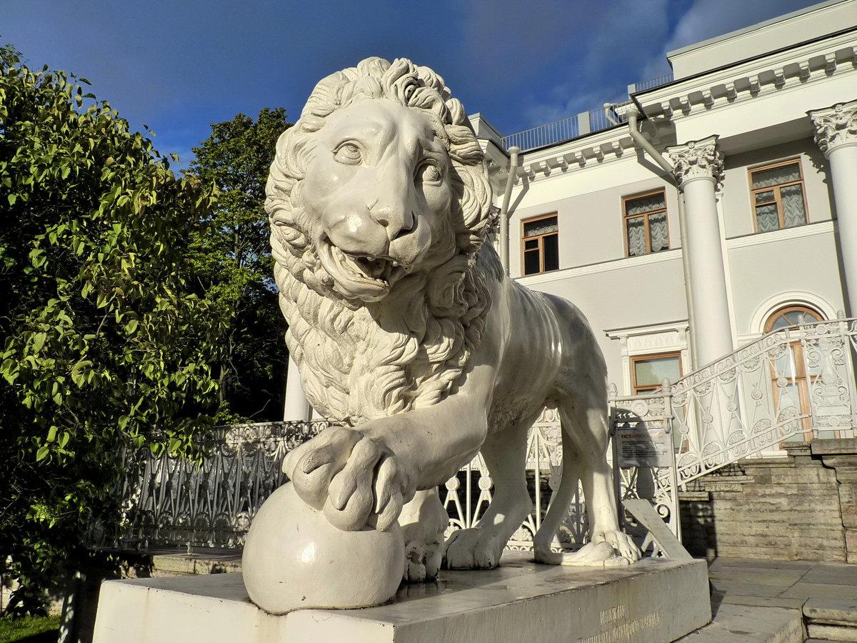 Картинки львы петербурга