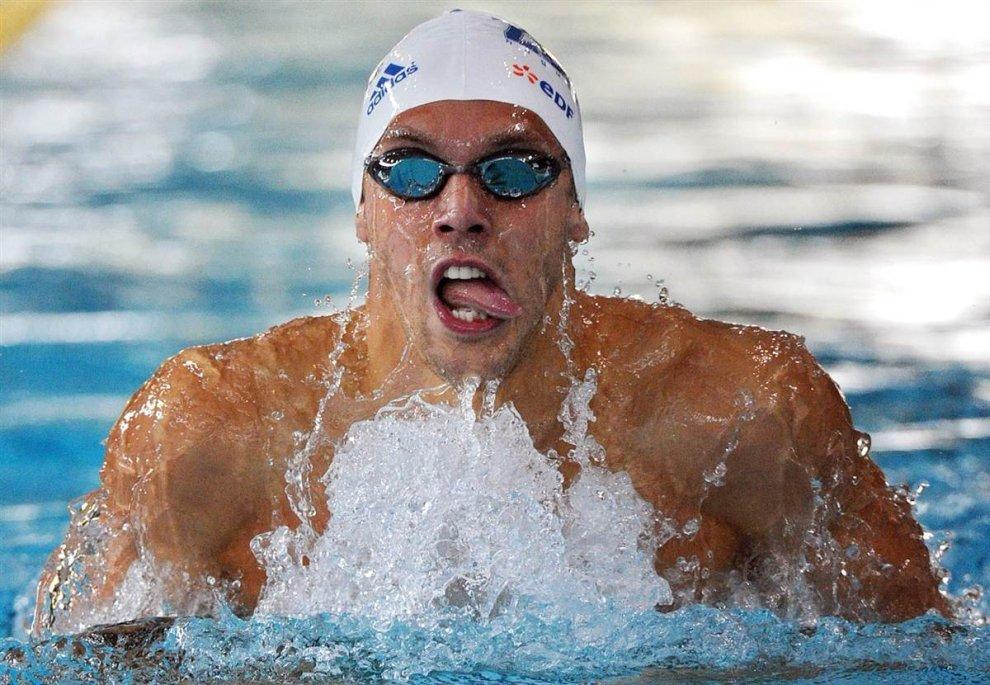 Смешные картинки с плаванием, поздравлением нового года