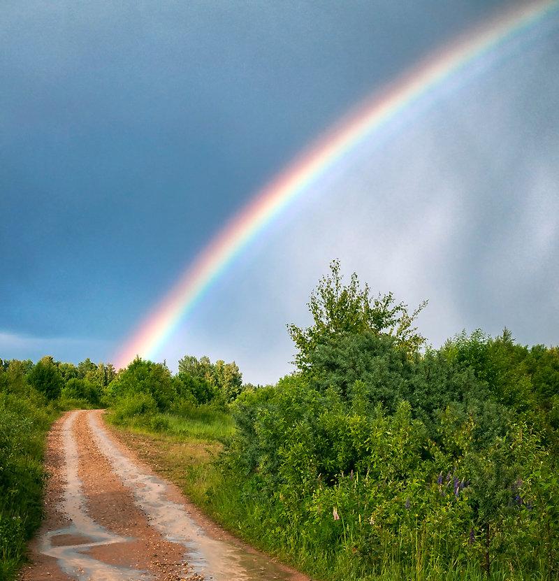 Картинки после дождя всегда выглядывает радуга