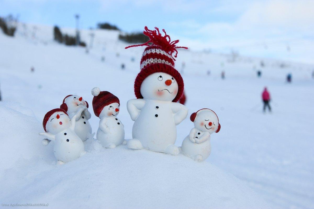 Про, картинка прикольный снеговик