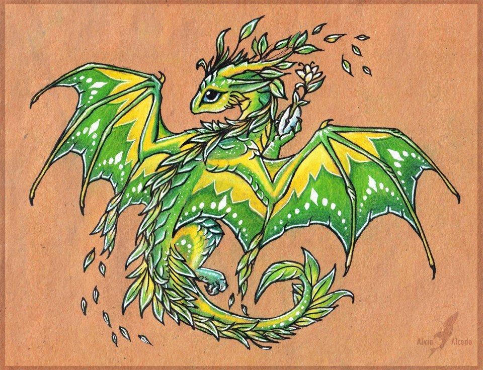картинки с драконом в мультяшном виде цель графических фоторедакторов