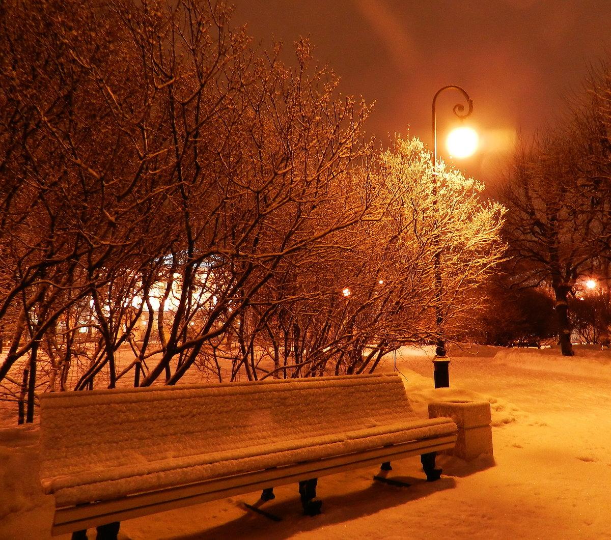 Картинка зимние вечера