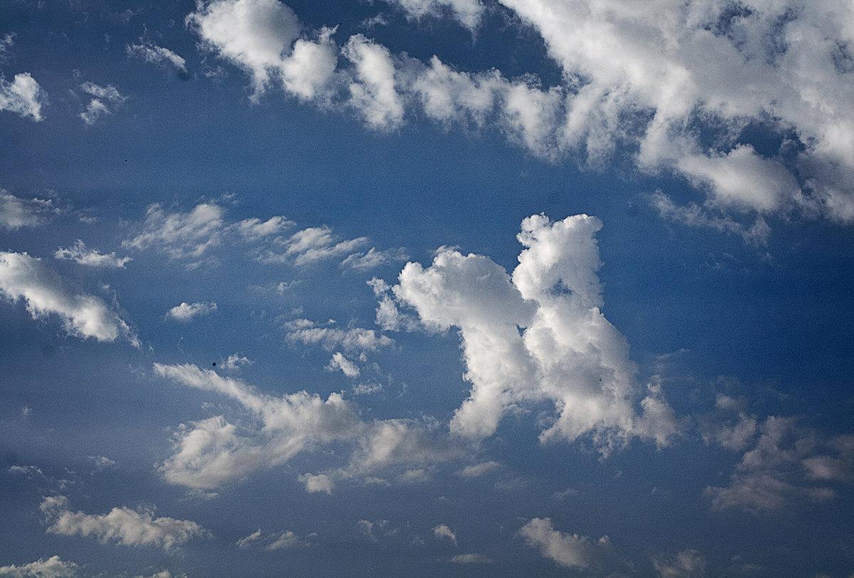 интересные картинки из облаков рубашку лицо