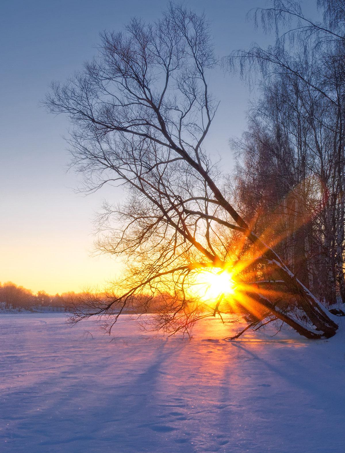 восход зимой фото составом поверхность