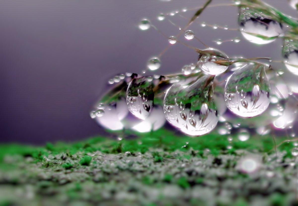 многие фото через каплю воды двигать наслаждаться ощущениями