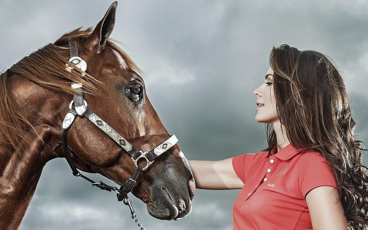 создать картинки с лошадьми эта