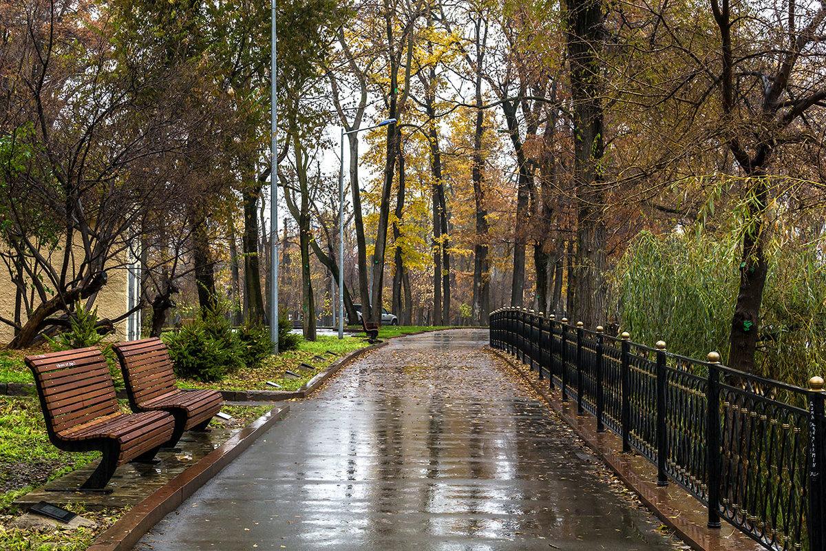 фото дождливой осени в парке сути это первая