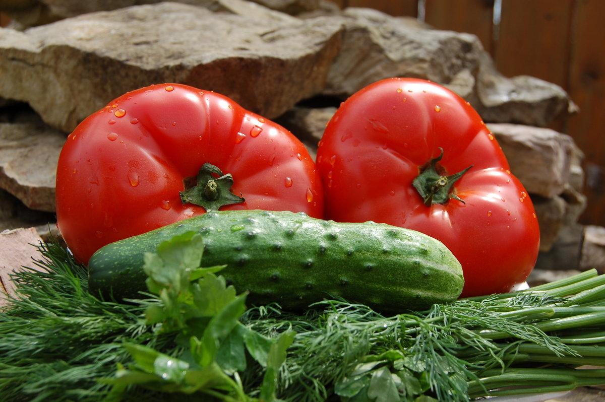 Картинки огурцов и томатов