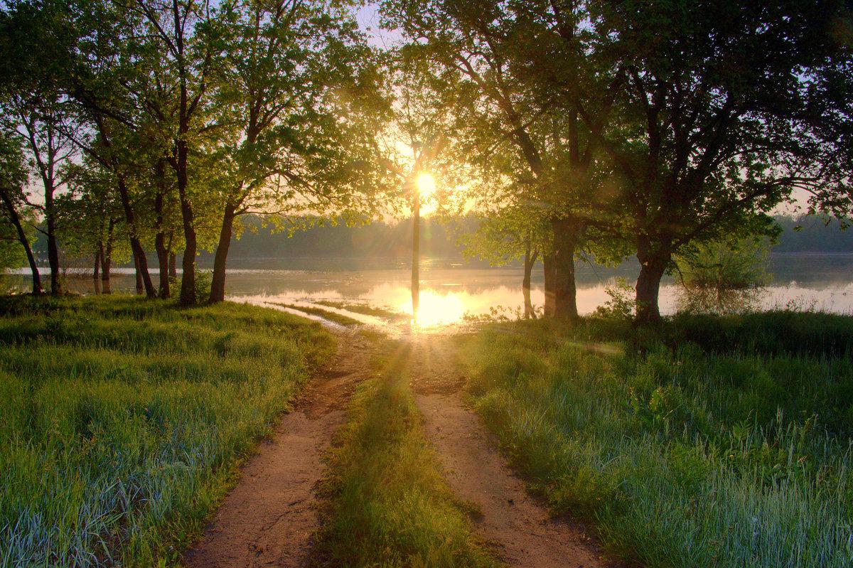 Картинки весна утро красота поликарбоната лучших
