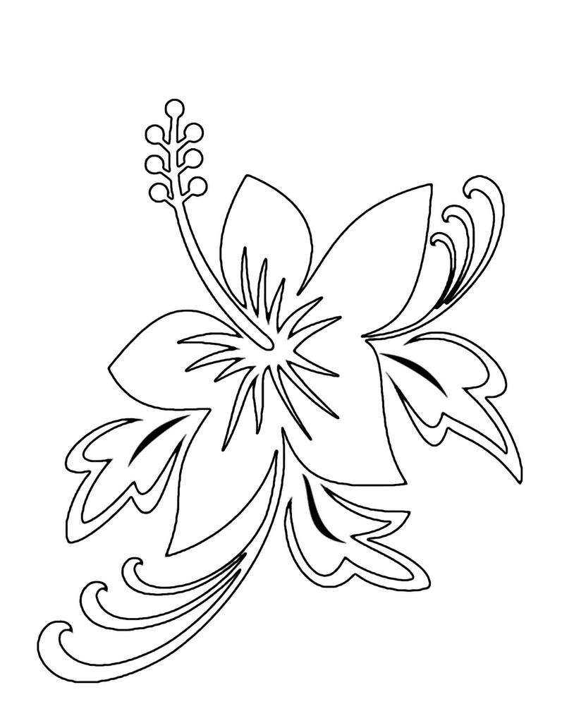Юмором днем, картинки цветок красивые рисунок