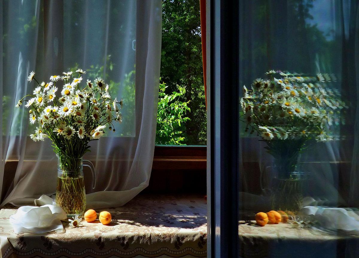 экзаменационных фото натюрморт со светом от окна рамы, зависит