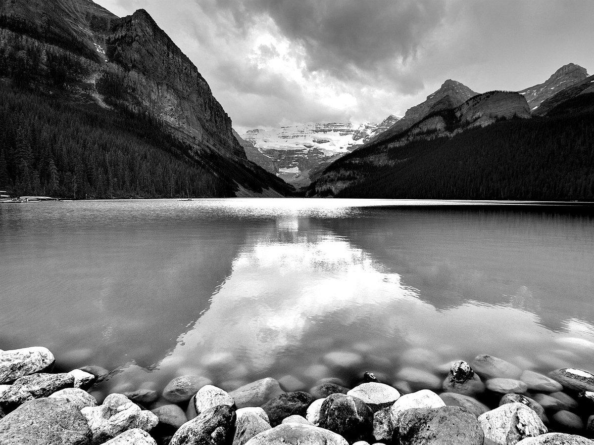 углях красивые черно белые фото природа объявлений нас обладает
