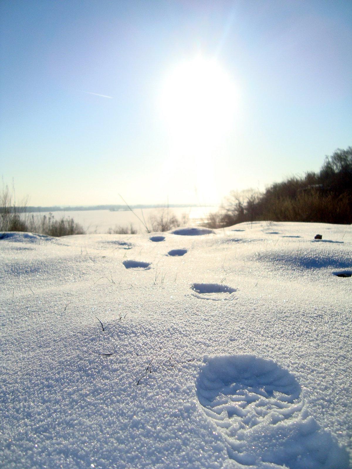лицевой следы на снегу мужчины фото водоема идеальное