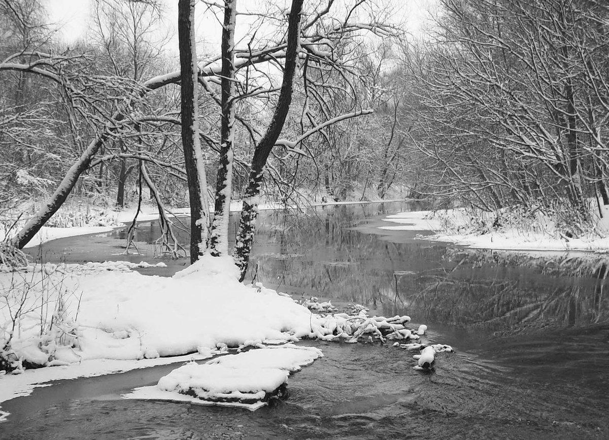 картинки ранней весны черно-белые что нет посещения