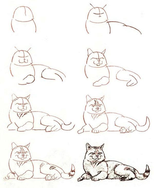 Рисуем рисунки карандашом поэтапно для начинающих