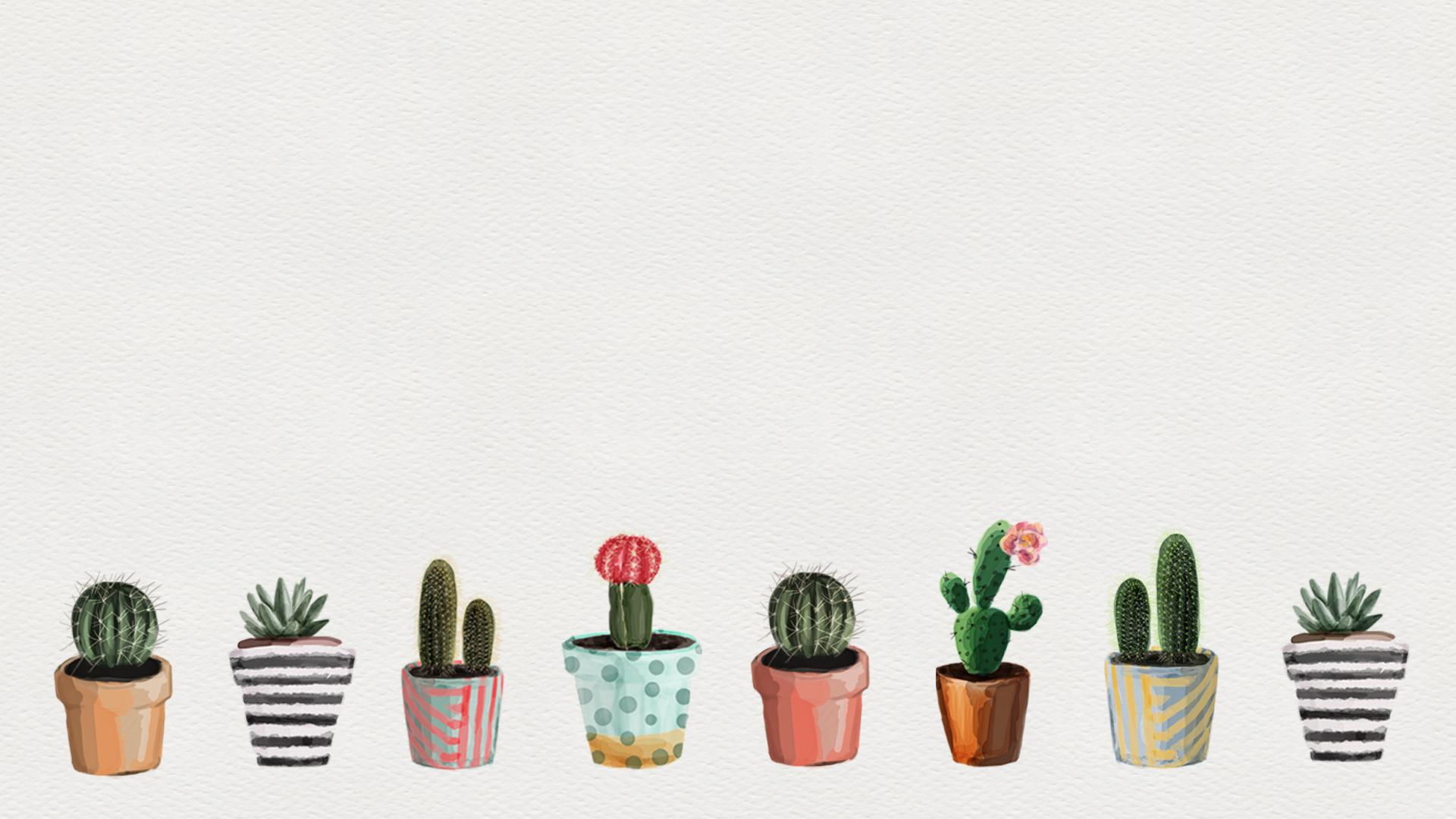 Cactus Wallpaper 52 Images карточка пользователя Abokova2005 в