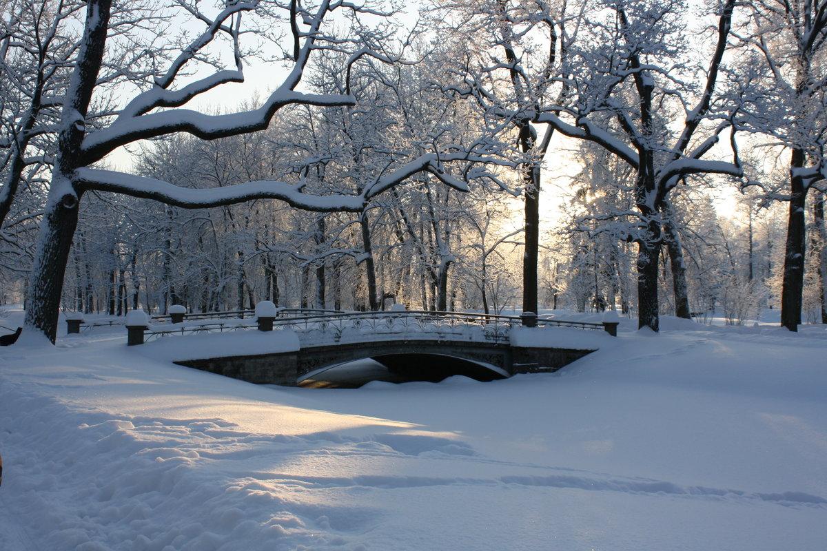 Парк эрмитаж в москве фото