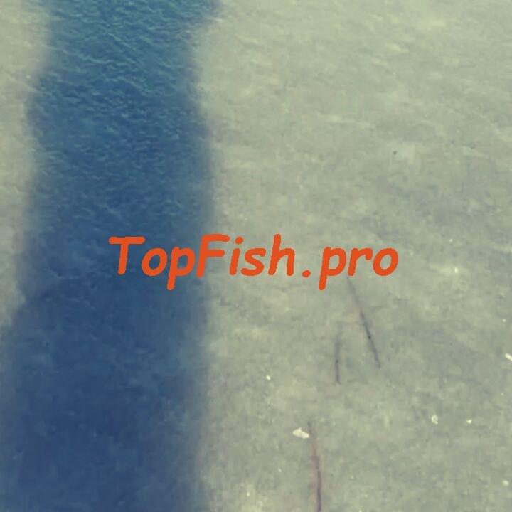 Активатор клёва fish xxl реальные отзывы