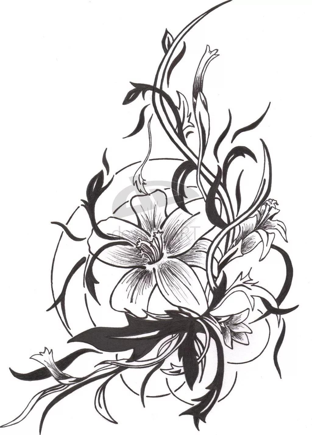 Мой, картинки черно белых цветов