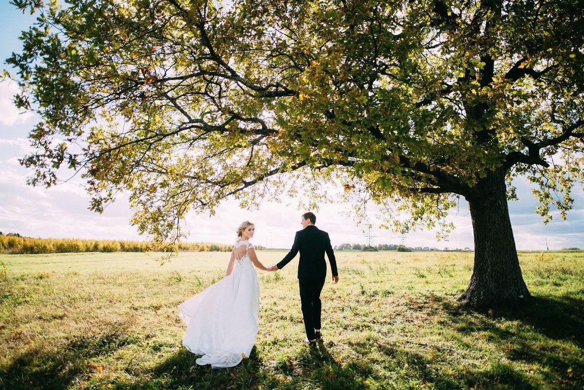 свадьба красота картинки также