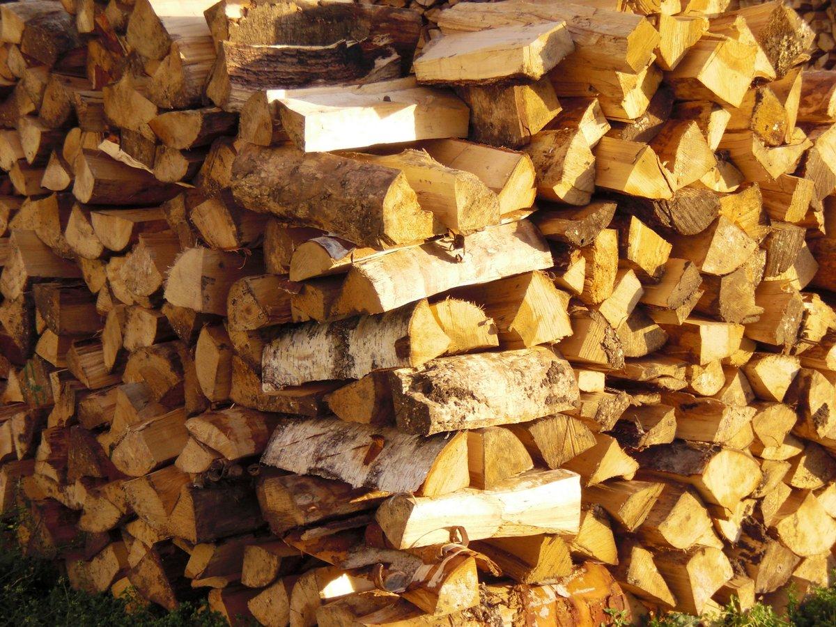 купить дрова в спб недорого
