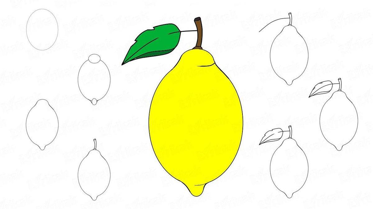 Лимон картинка поэтапно