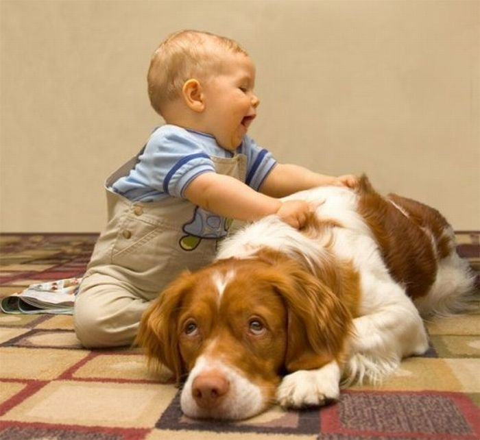 Смешные картинки дети и собаки смешное