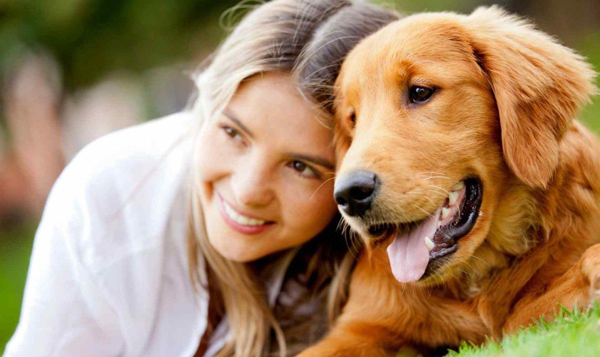 Картинки с животными и людьми, вышивки