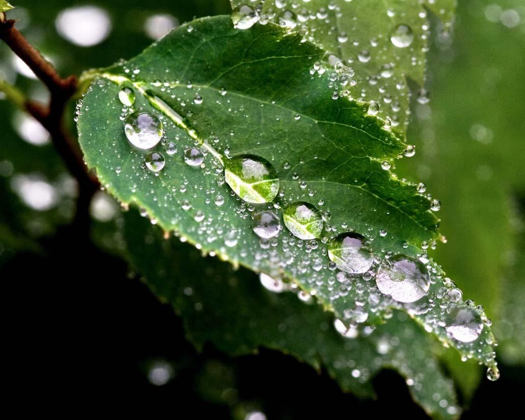 картинки капли дождя для детей