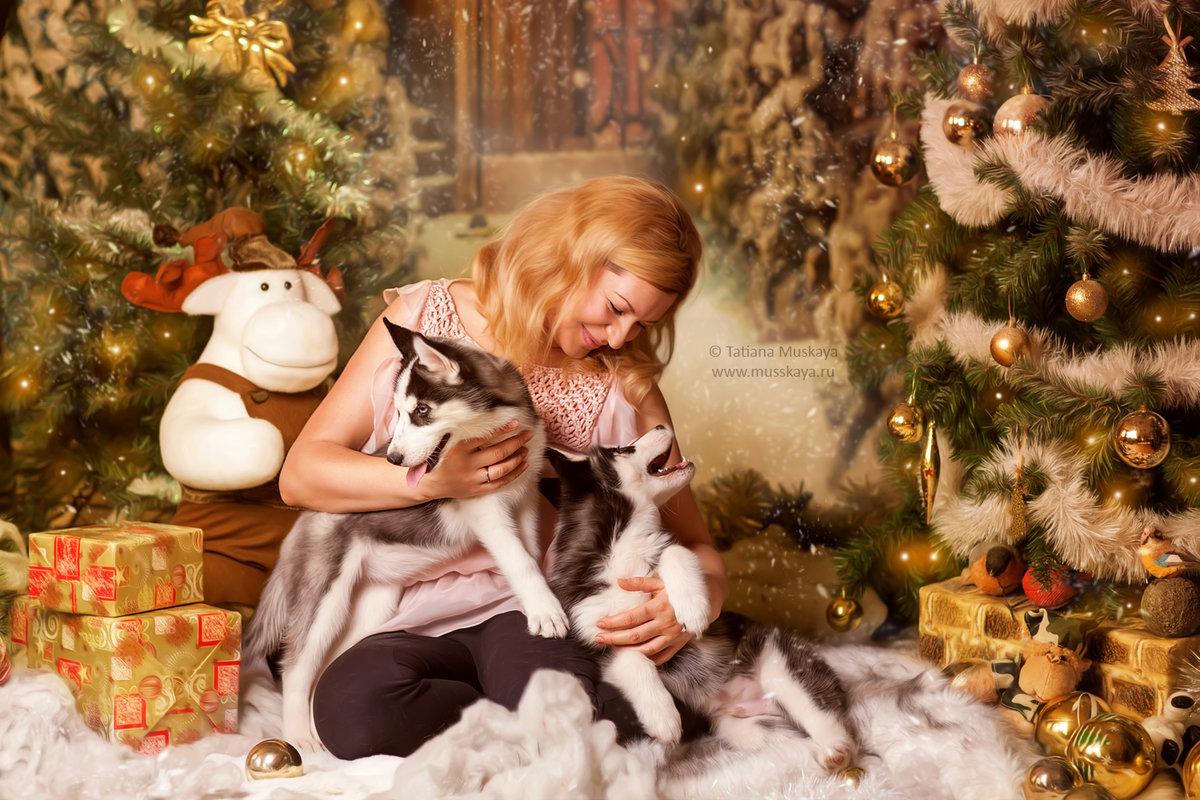 блюдо прекрасная новогодние фотосессии с детьми санкт петербург дело нее