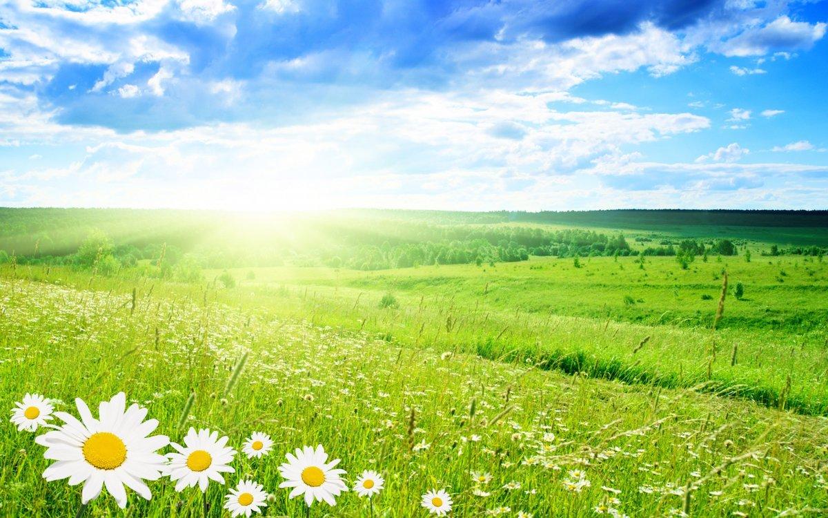 Картинки, картинки красивая природа лето