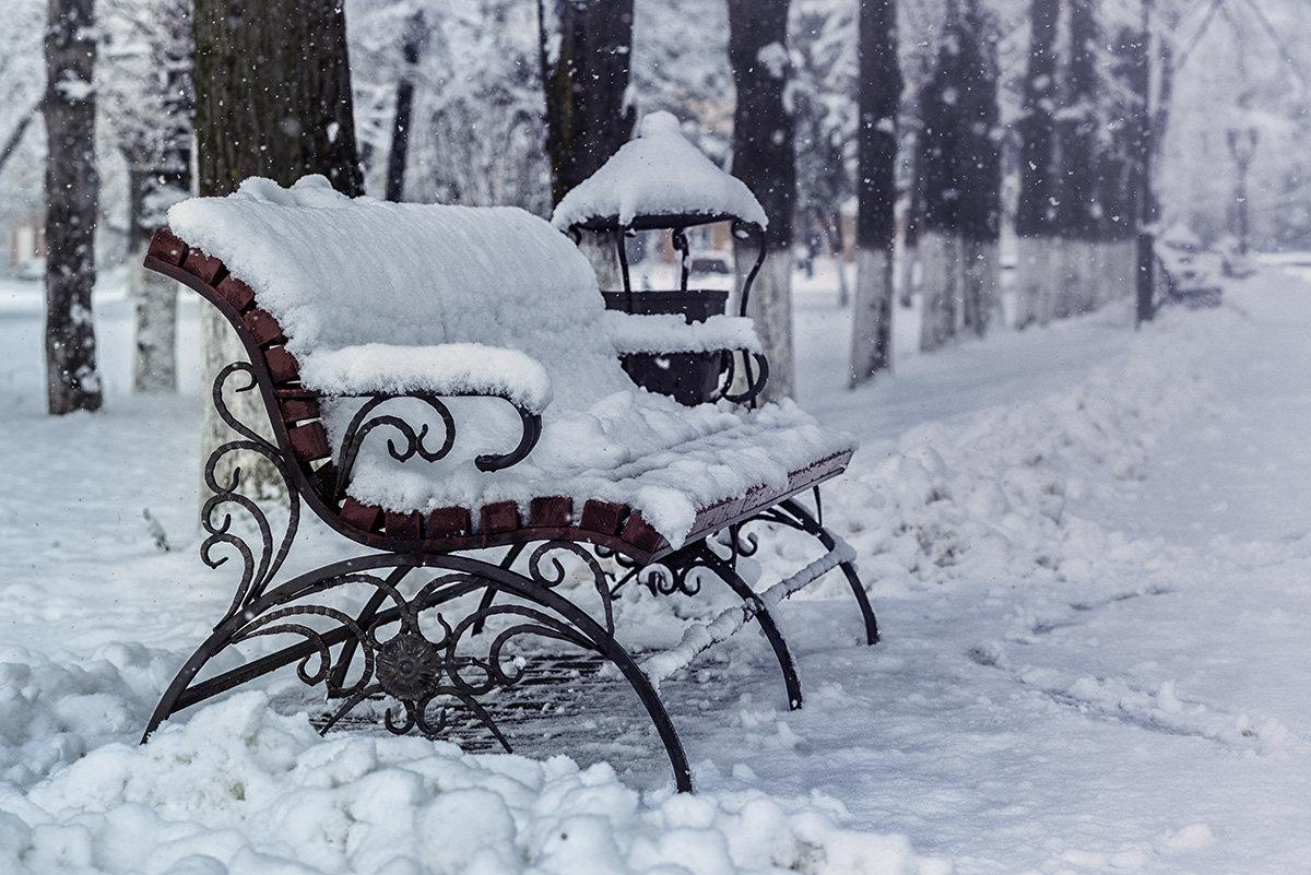 фото скамейка зимой тогда