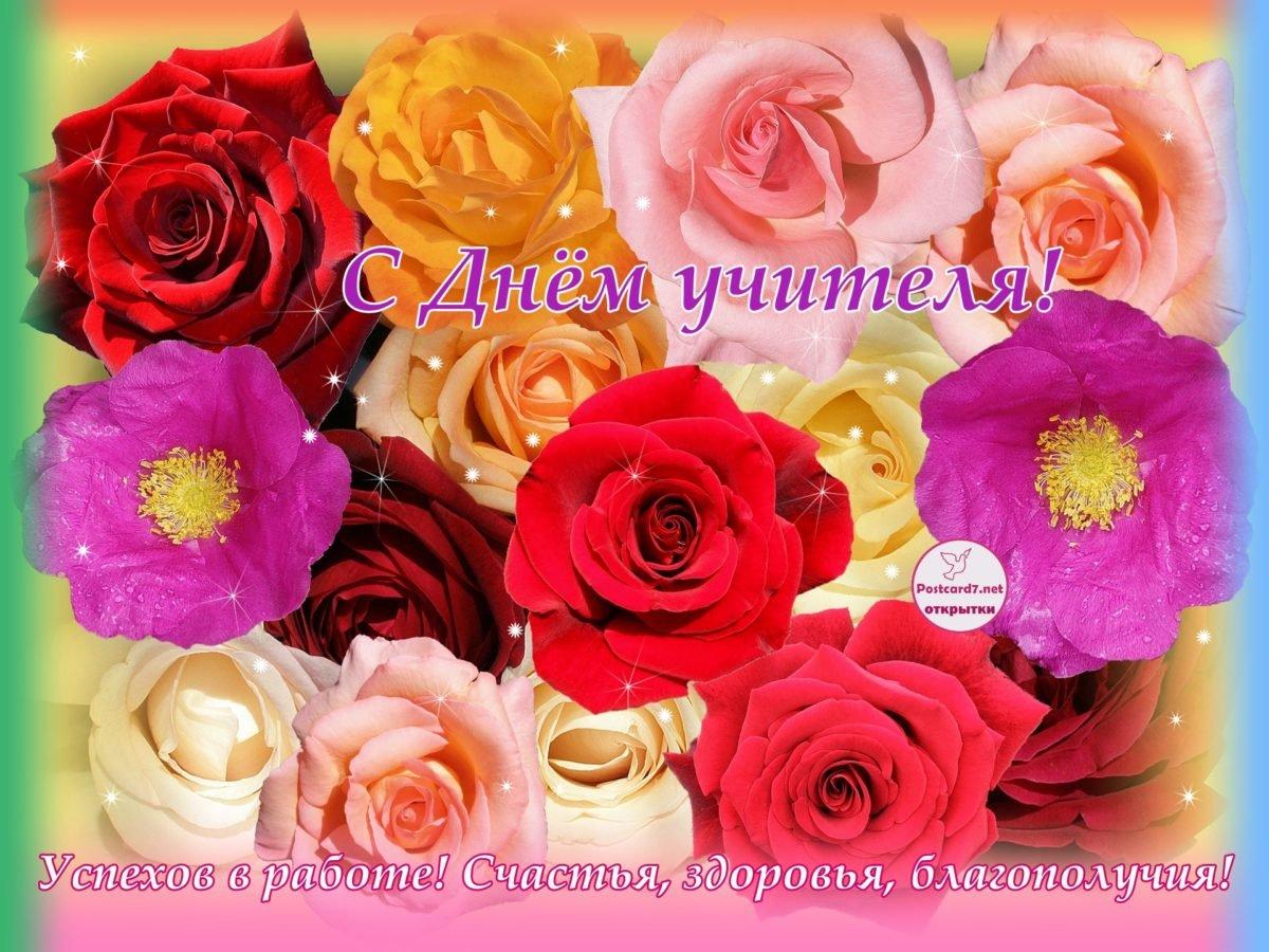 Открытки с розами на день учителя