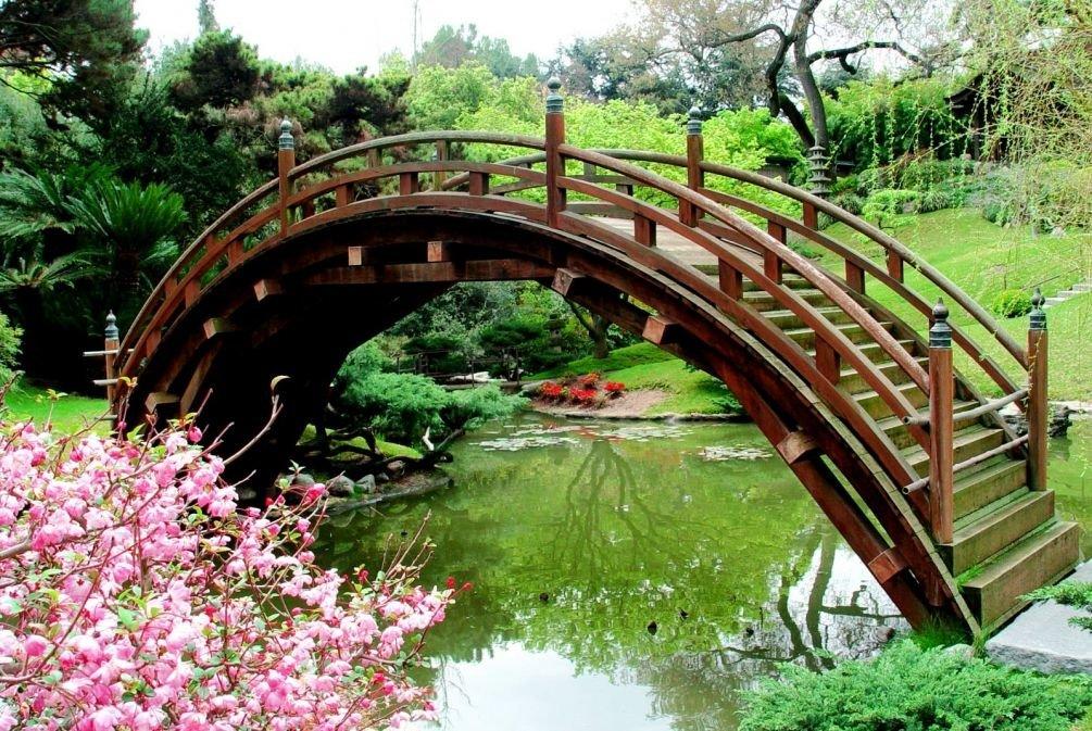 красивые мостики картинка плодово-ягодная культура, обладающая