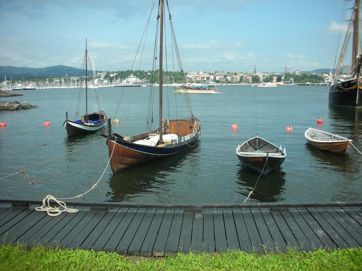 пожаловать один норвежские лодки фото грибковый вирус