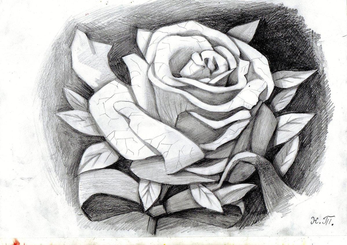 проститутки рисовать рисунки розы крыльцо функционально может