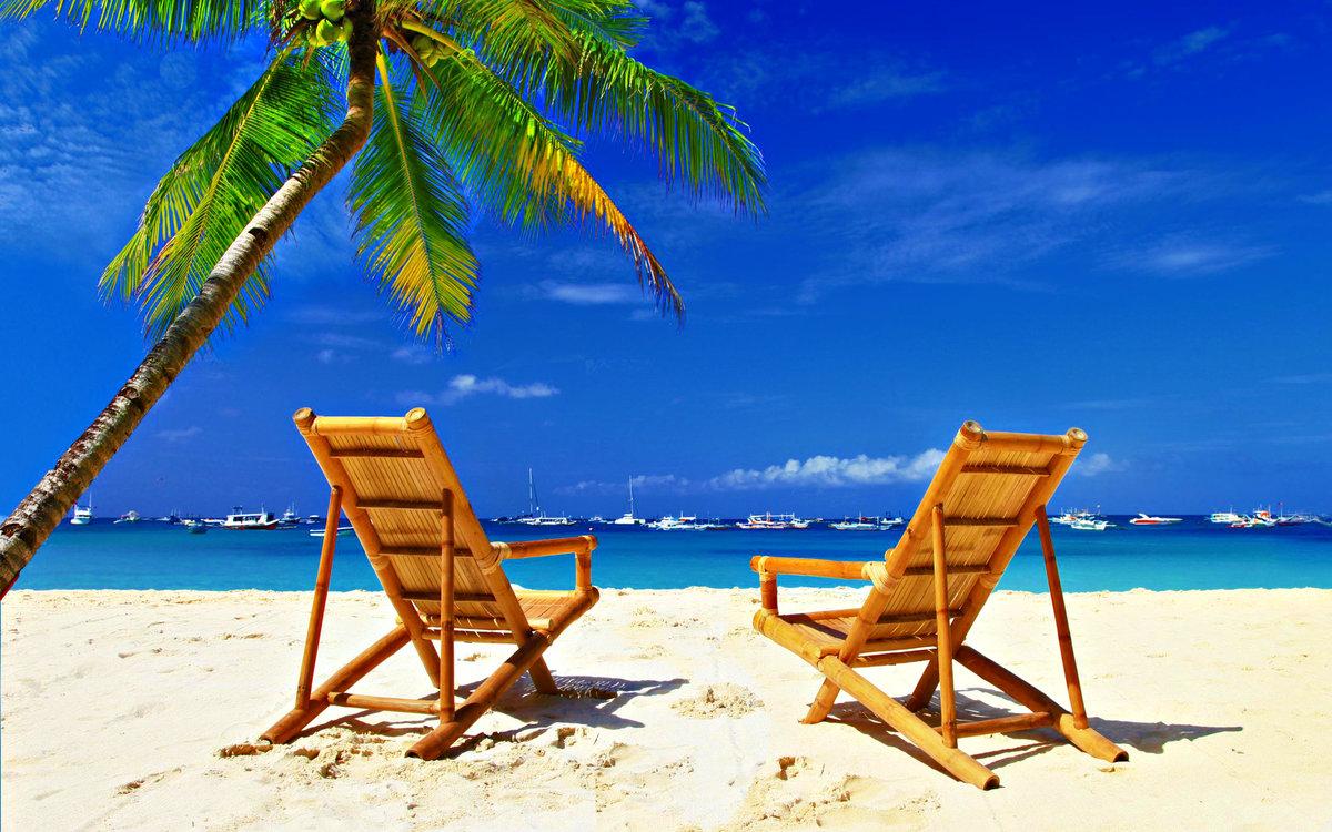 Дама, открытка с морем и пальмой