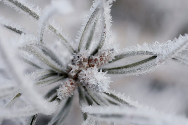 Так зима идёт у меня )))