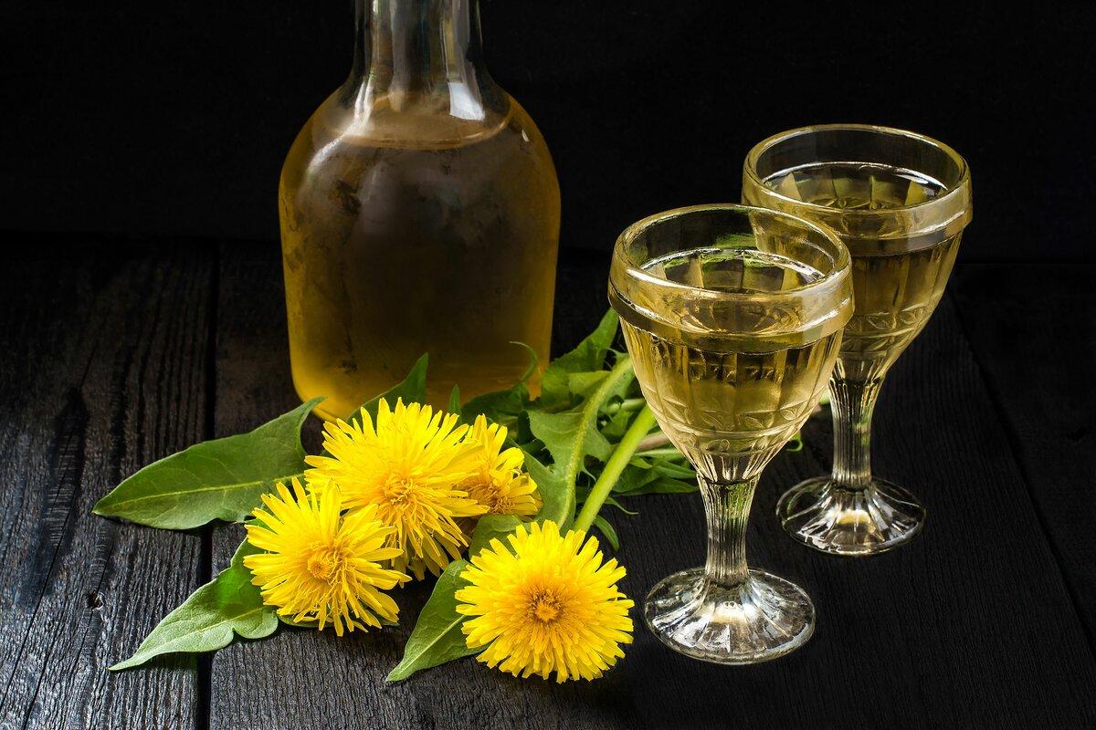 рецепт вина из одуванчиков, полезные свойства одуванчика в кулинарии и косметике