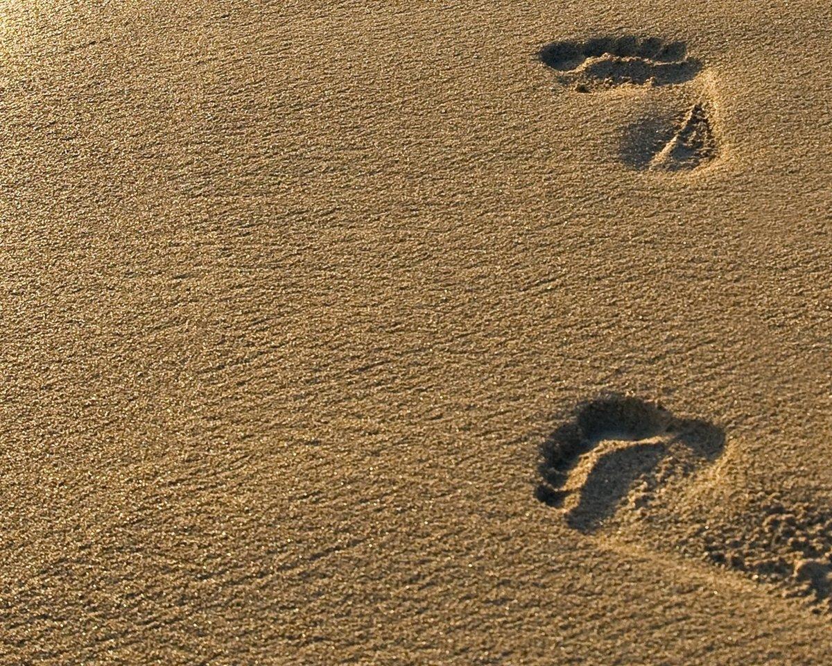 влажный песок