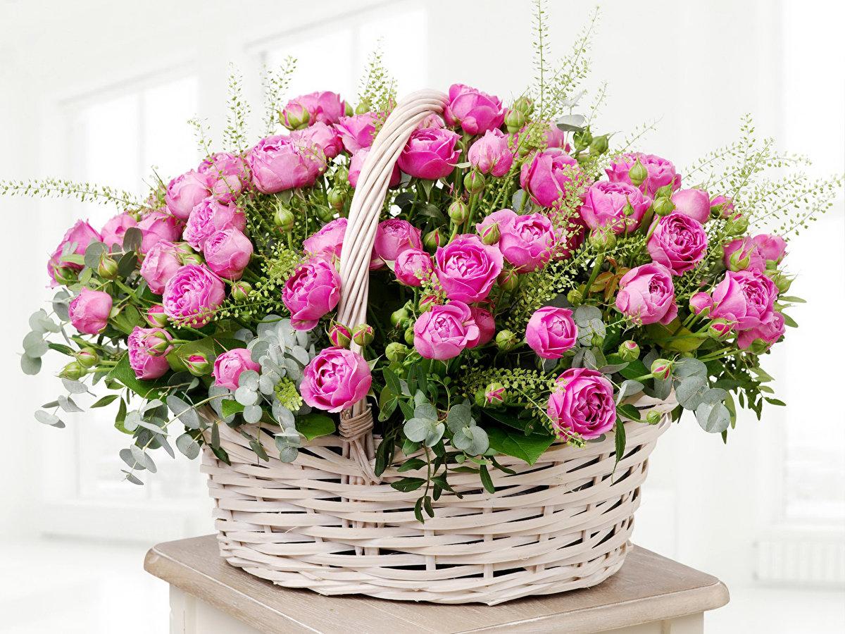 Лучшие открытки из роз