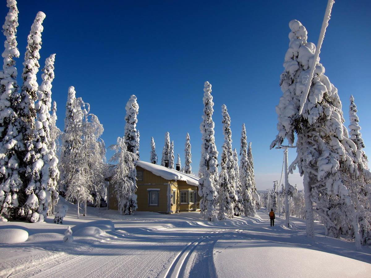 сюжету лапландия фото зимой мистические истории станут